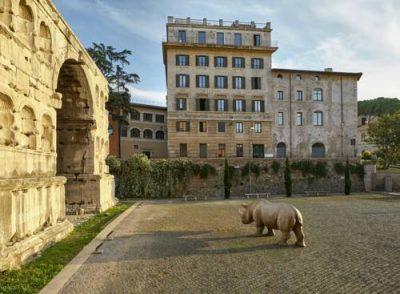 Visita gratuita aPalazzo Rhinoceros